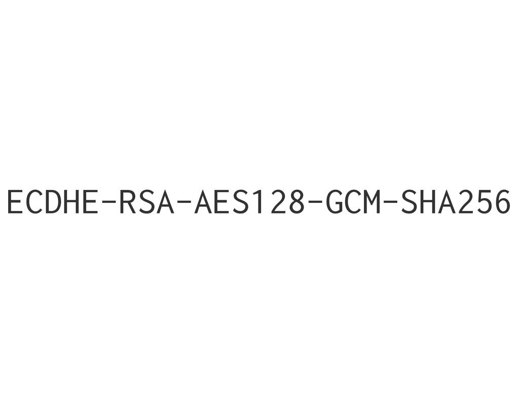 ECDHE-RSA-AES128-GCM-SHA256