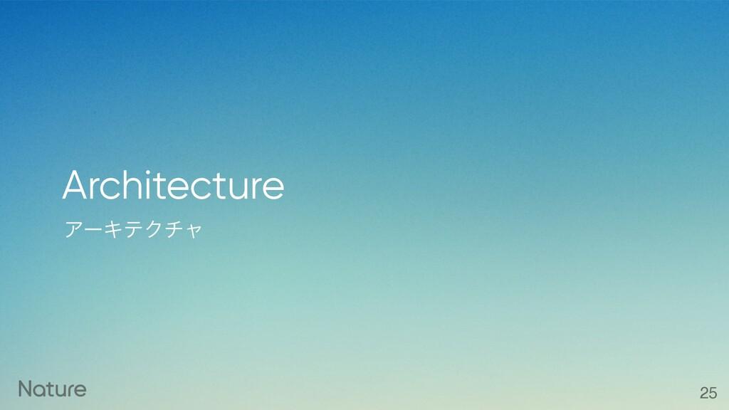ΞʔΩςΫνϟ Architecture 25
