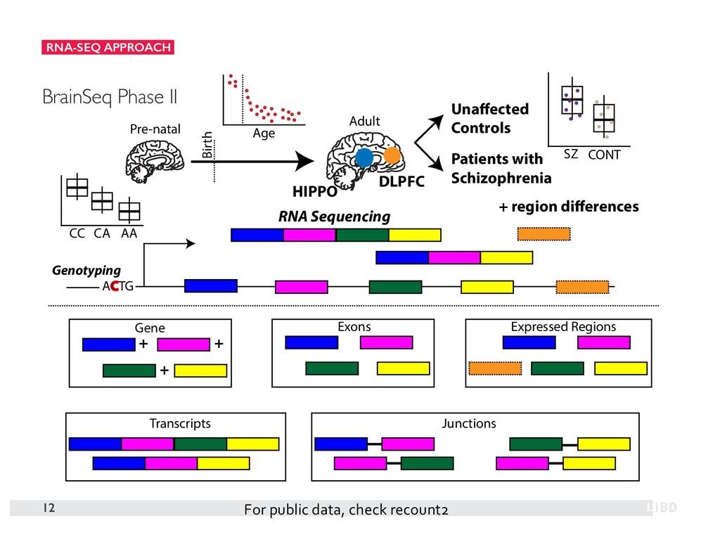 RNA-SEQ APPROACH 12 BrainSeq Phase II Pre-natal...