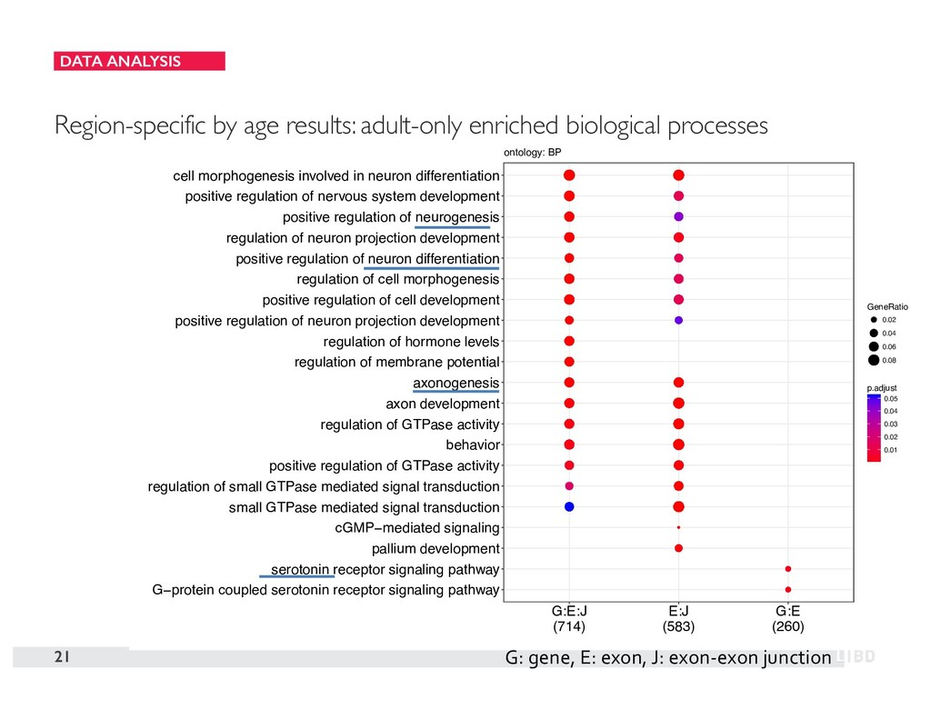 DATA ANALYSIS 21 Region-specific by age results...