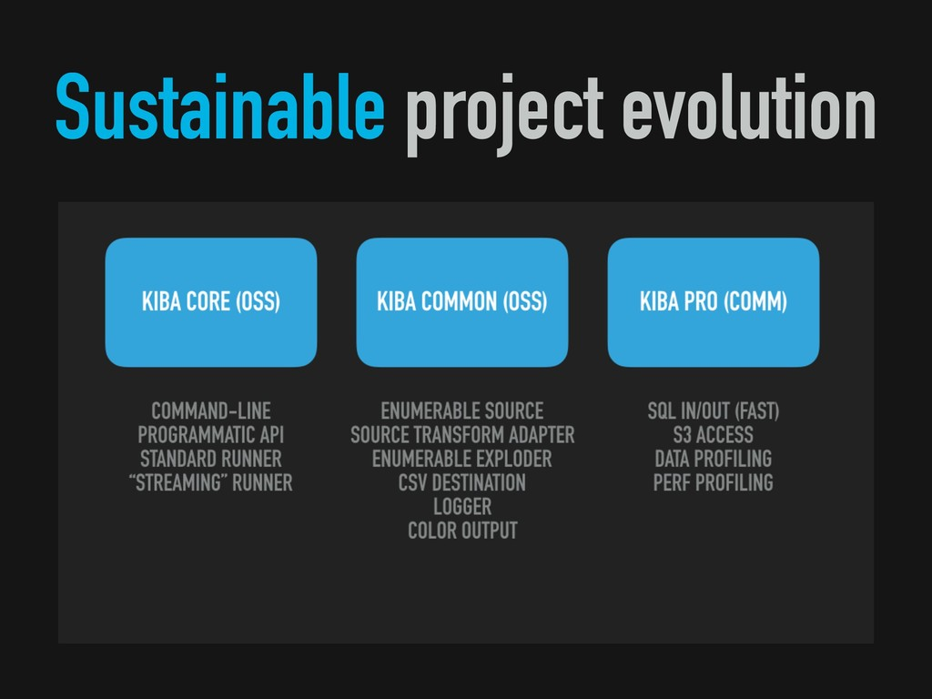 Sustainable project evolution
