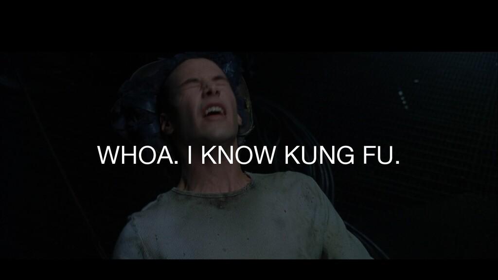 WHOA. I KNOW KUNG FU.