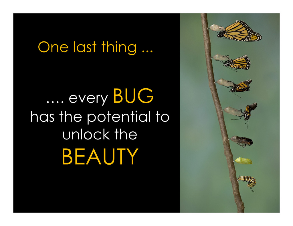 …. every BUG has the potential to One last thin...