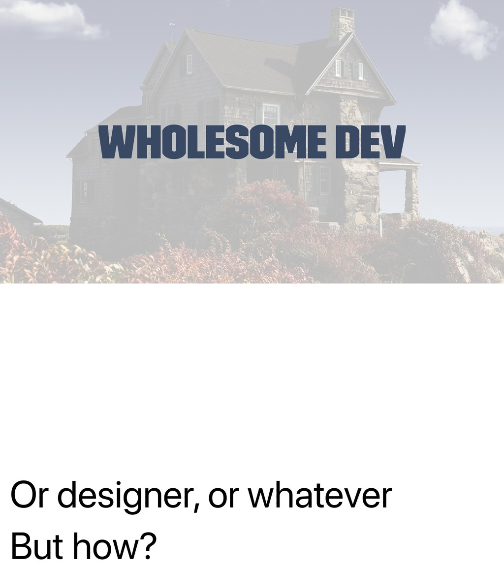 Or designer, or whatever But how? Wholesome Dev