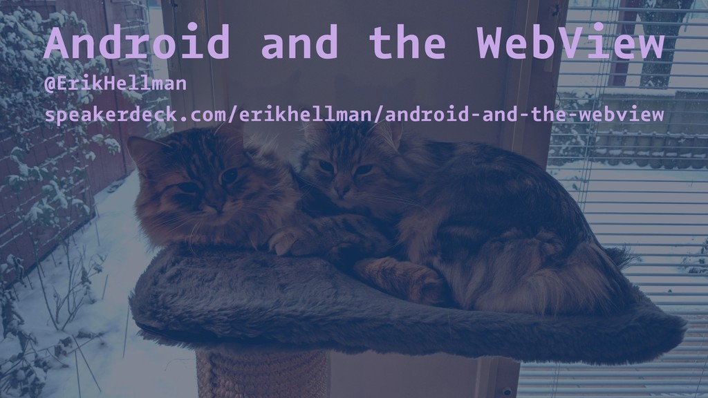Android and the WebView @ErikHellman speakerdec...
