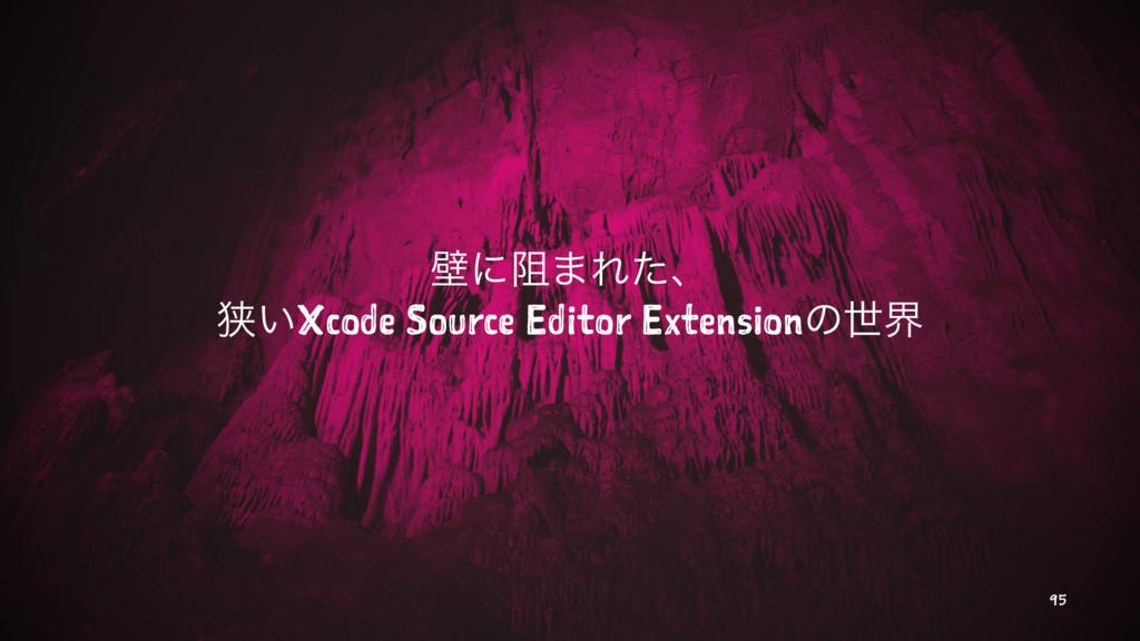 นʹ્·Εͨɺ ڱ͍Xcode Source Editor Extensionͷੈք 95