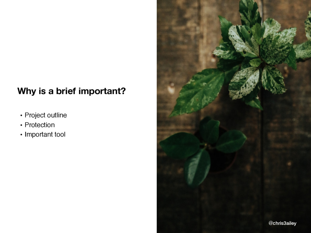 Why is a brief important? • Project outline • P...