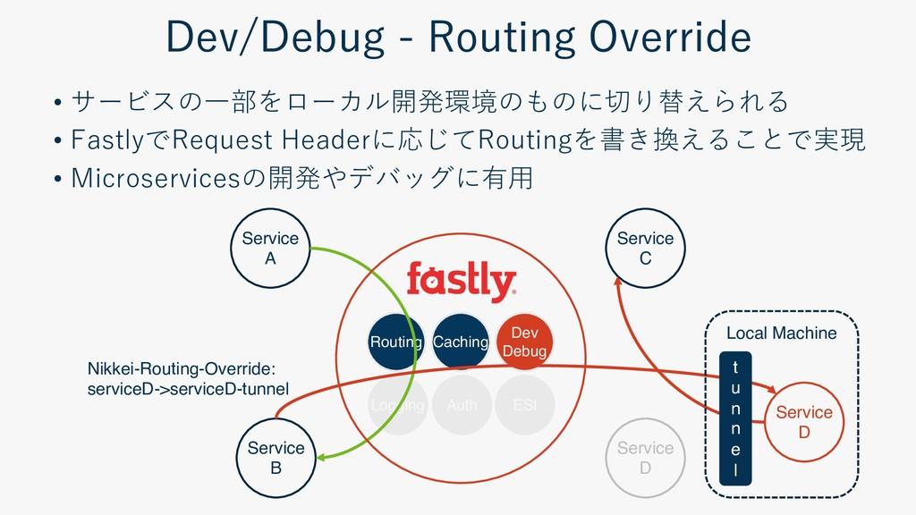 - - Routing Caching Dev Debug Logging ESI Servi...