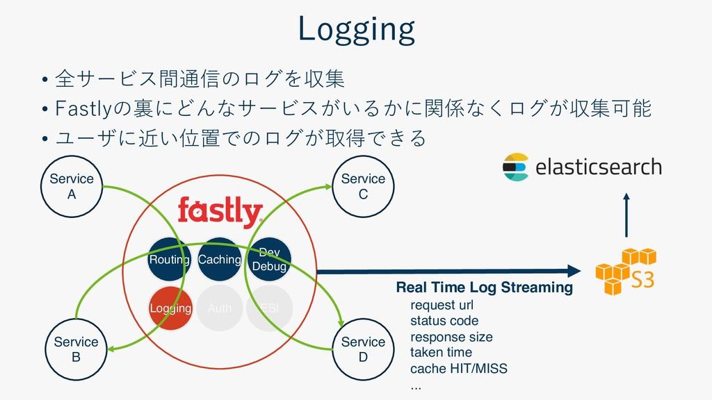 Routing Caching Dev Debug Logging ESI S...