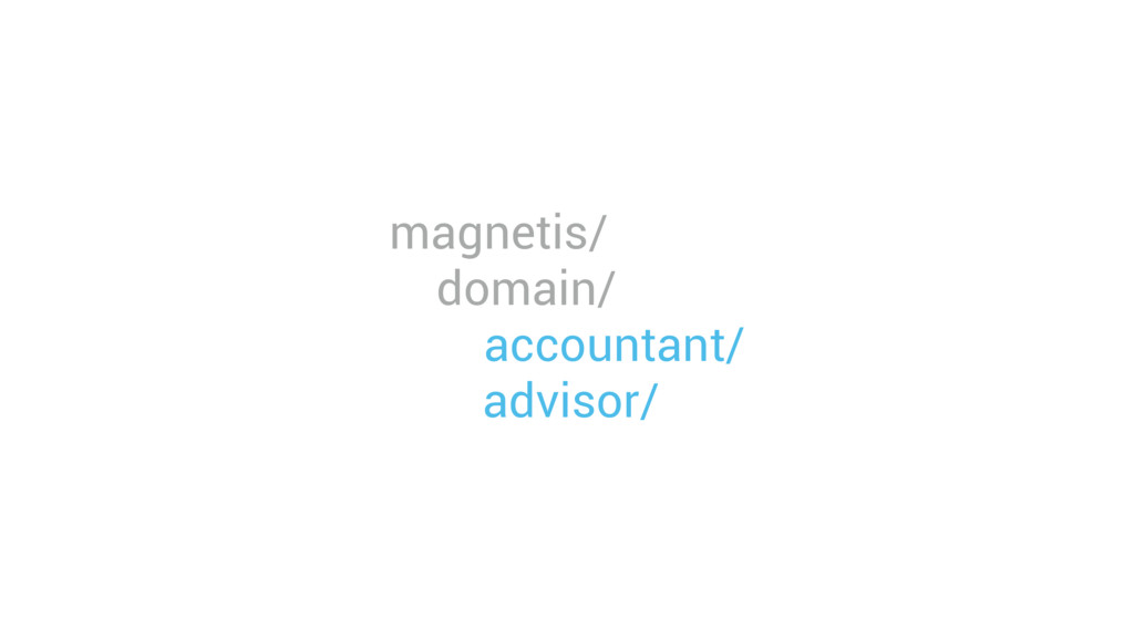 magnetis/ domain/ accountant/ advisor/