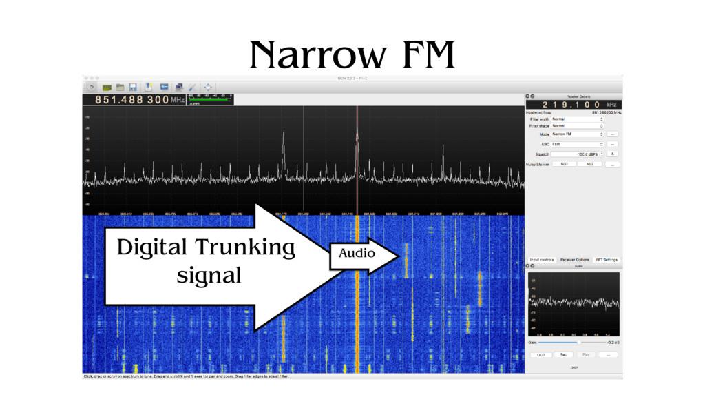 Narrow FM Digital Trunking signal Audio