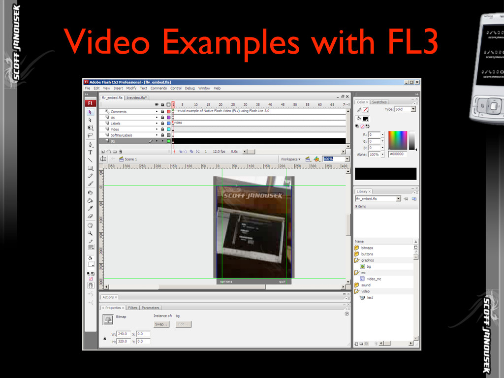 Video Examples with FL3