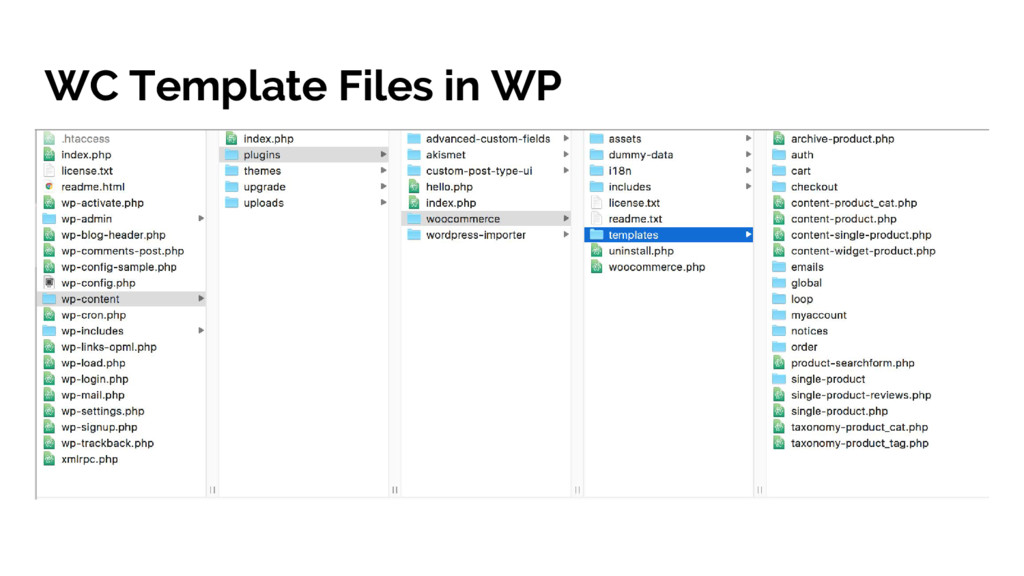 WC Template Files in WP