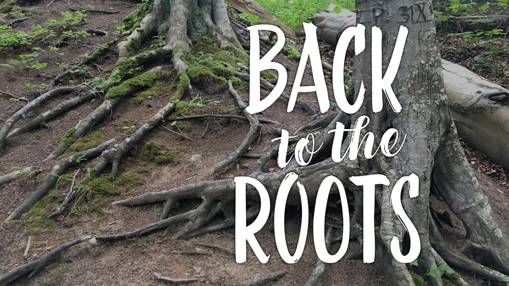 Back roots to the