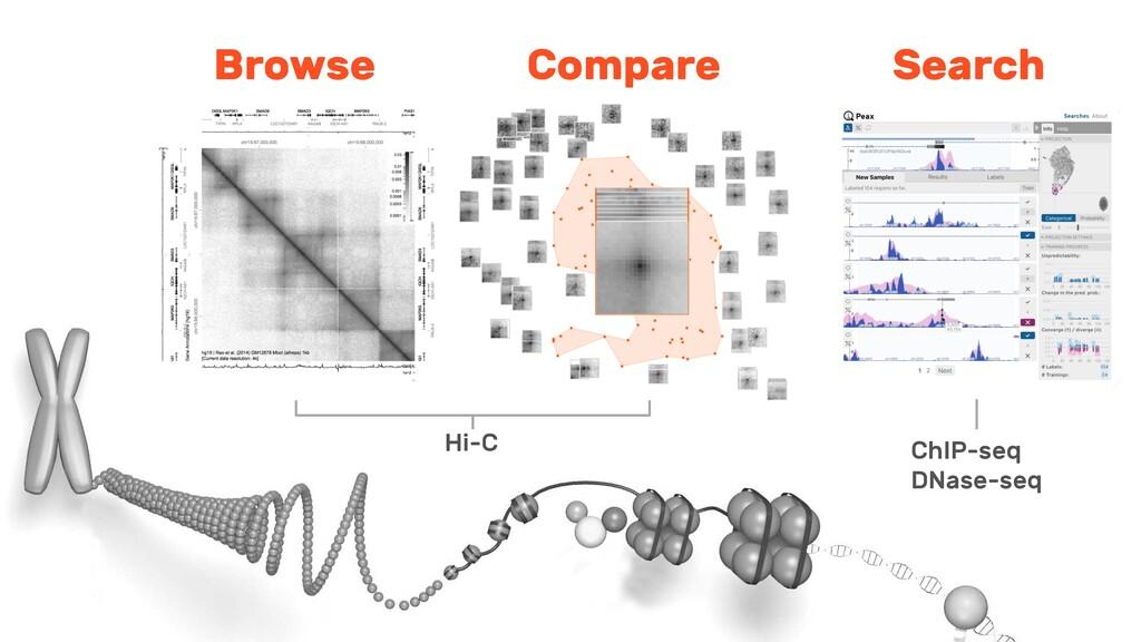Hi-C Browse Compare Search ChIP-seq DNase-seq