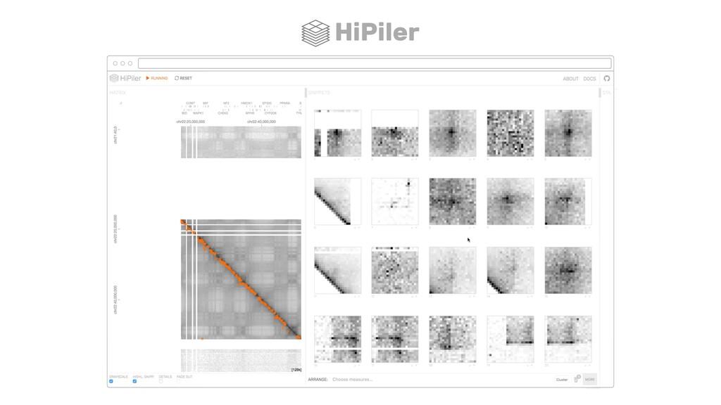 HiPiler