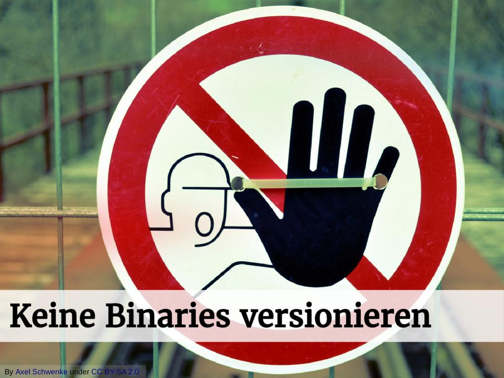 ᄡ + Keine Binaries versionieren By Axel Schwenk...