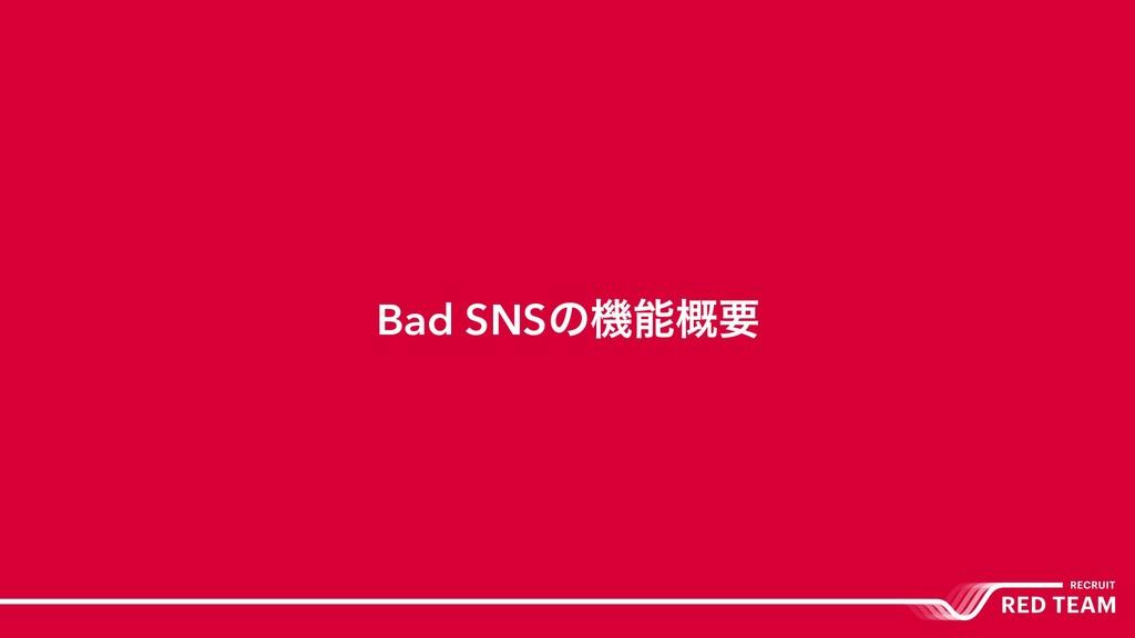 Bad SNSͷػ֓ཁ