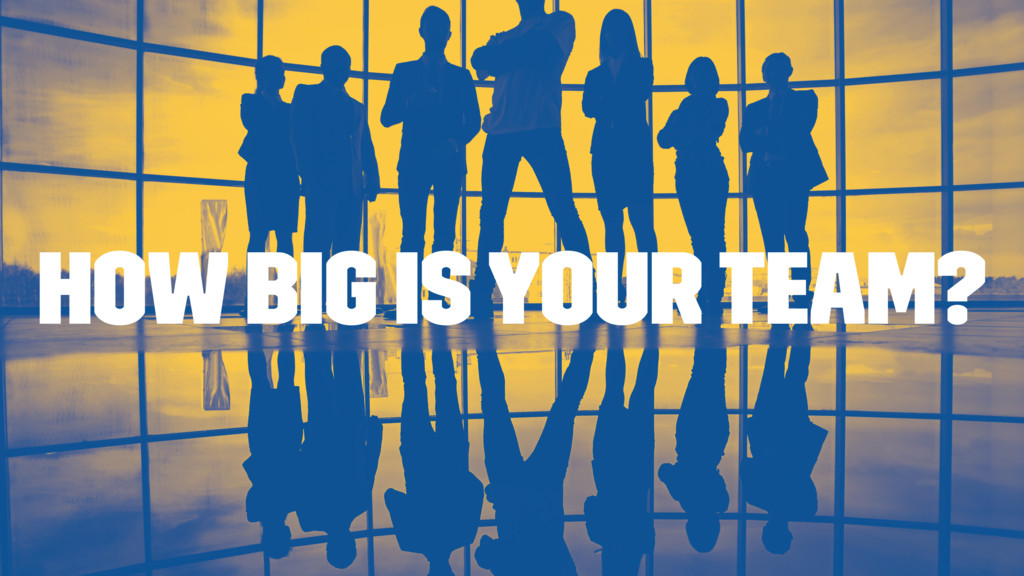 How big is your team?