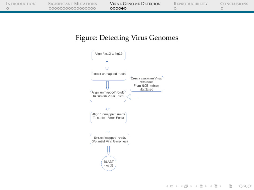 INTRODUCTION SIGNIFICANT MUTATIONS VIRAL GENOME...