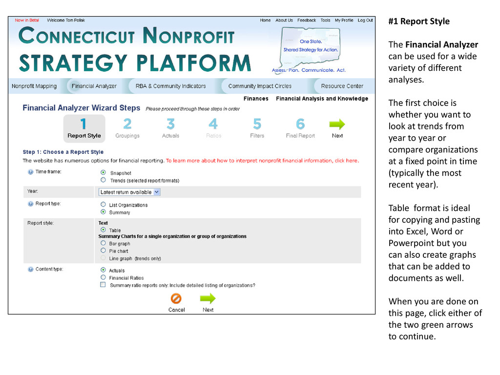 #1 Report Style The Financial Analyzer can be u...