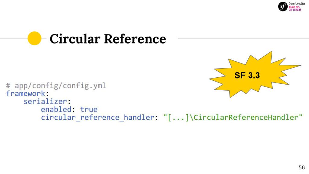 Circular Reference SF 3.3 58