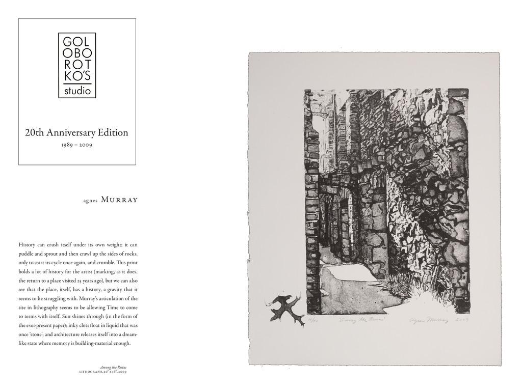 "Among the Ruins lithograph, 20"" x 16"", 2009 His..."