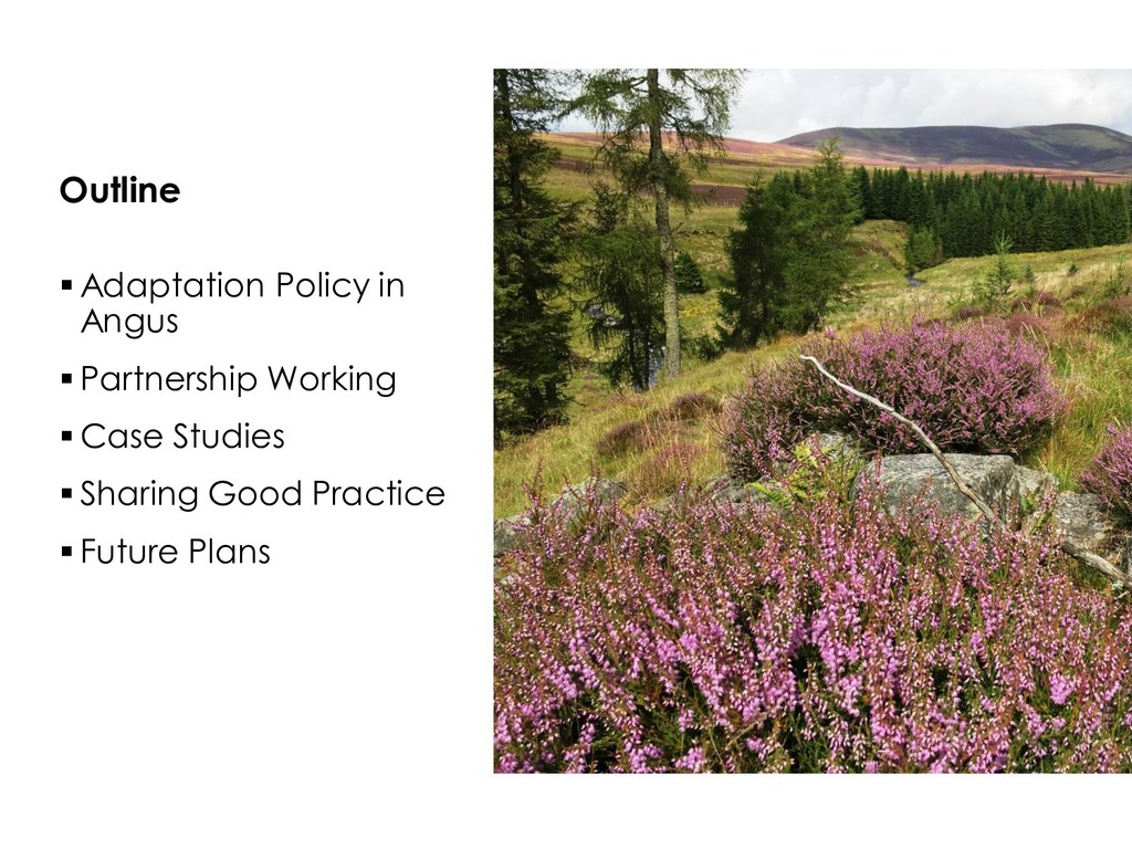  Adaptation Policy in Angus  Partnership Work...