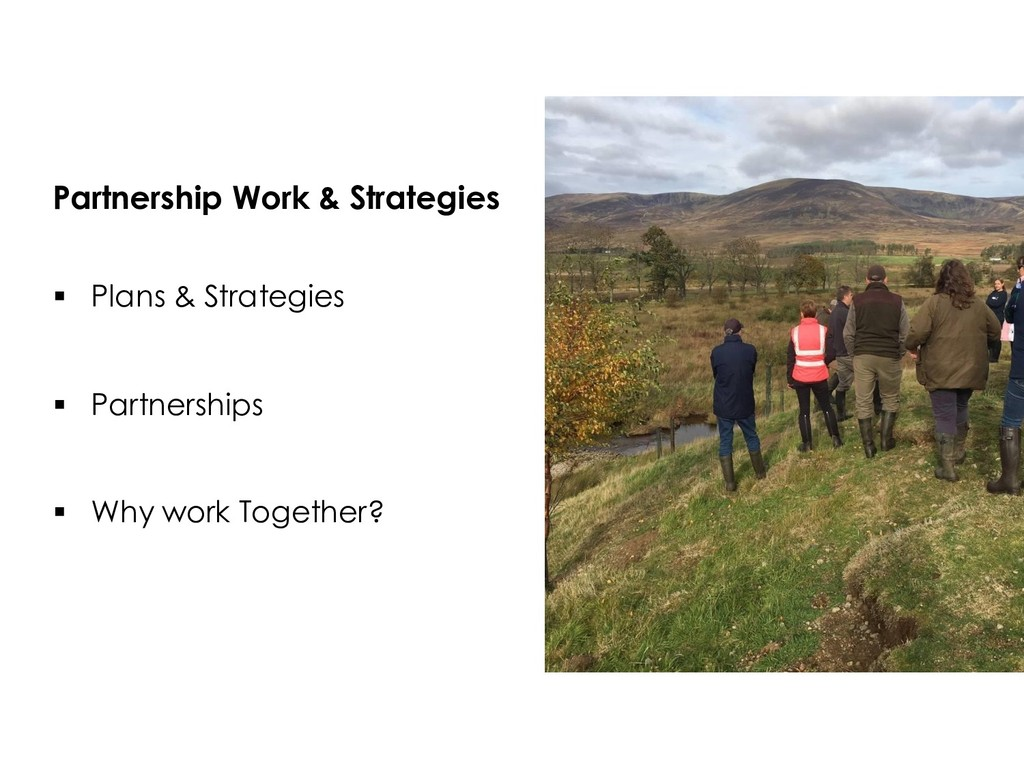 Partnership Work & Strategies  Plans & Strateg...