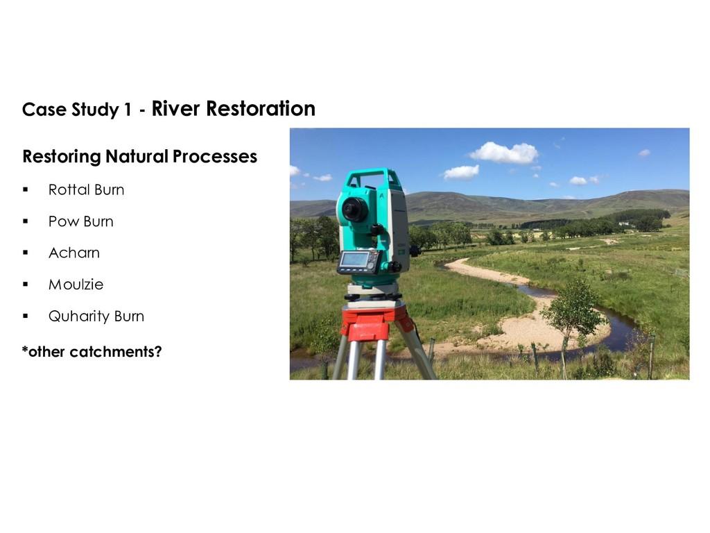 Case Study 1 - River Restoration Restoring Natu...