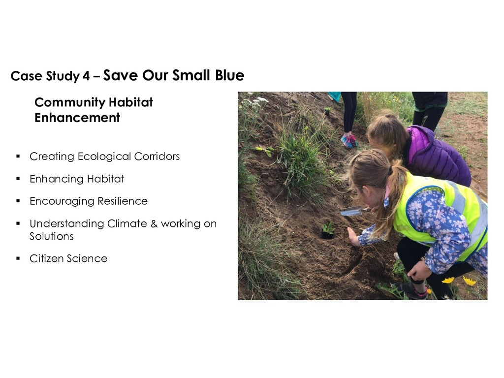 Case Study 4 – Save Our Small Blue Community Ha...
