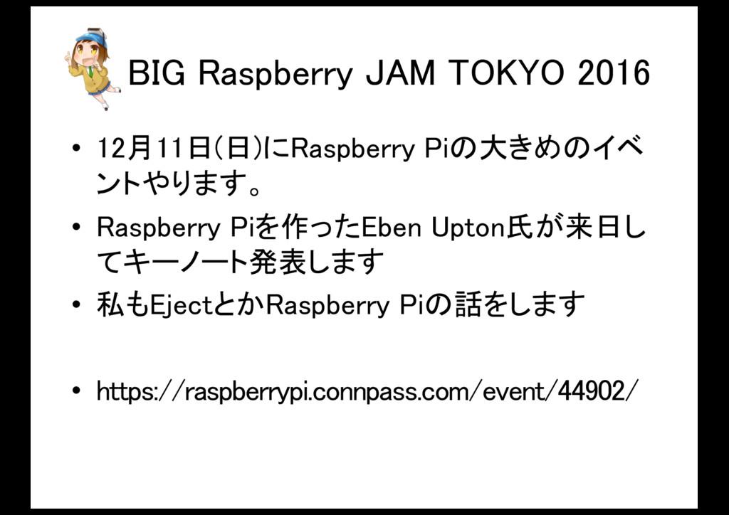 BIG Raspberry JAM TOKYO 2016 • 12月11日(日)にRaspbe...