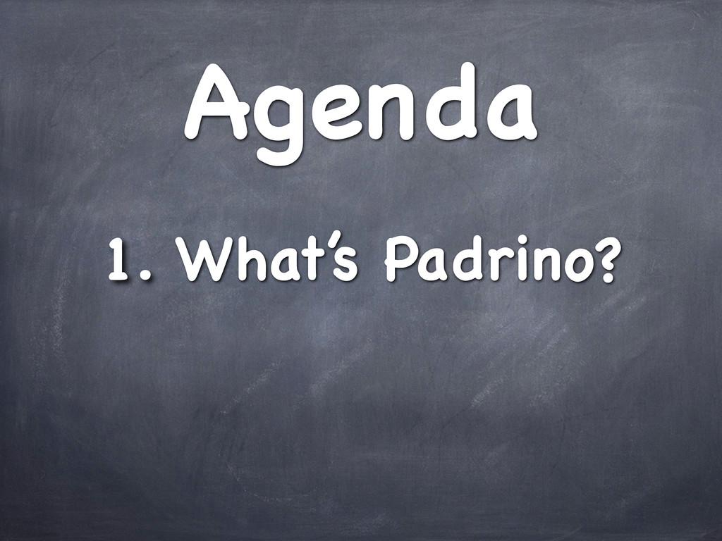 Agenda 1. What's Padrino?