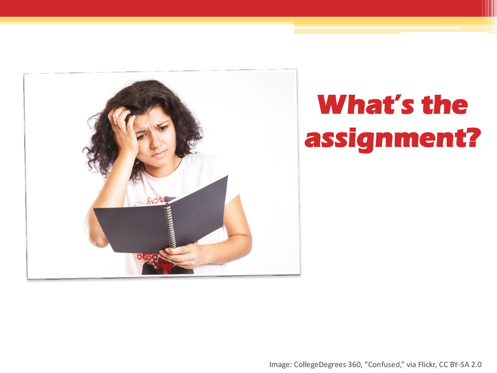 What's the assignment? Image: CollegeDegrees 36...