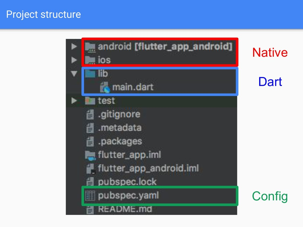 Project structure Native Dart Config