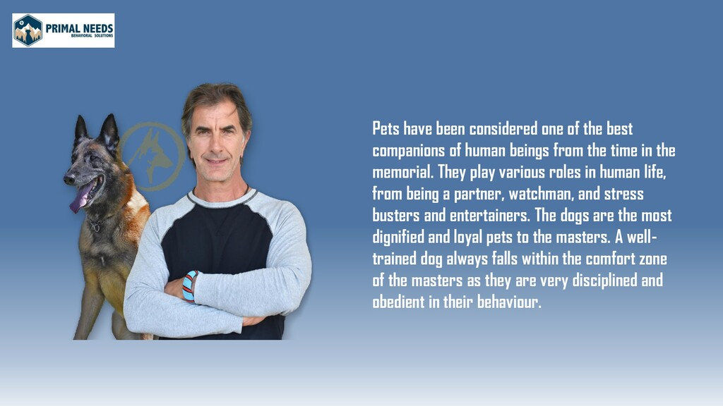 Pets have been considered one of the best compa...
