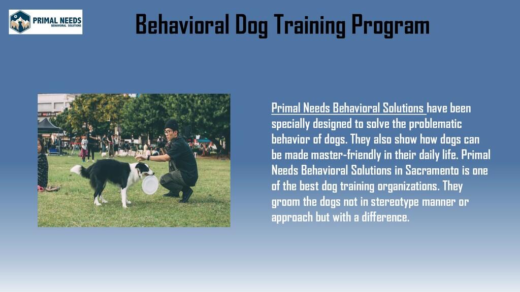 Behavioral Dog Training Program Primal Needs Be...