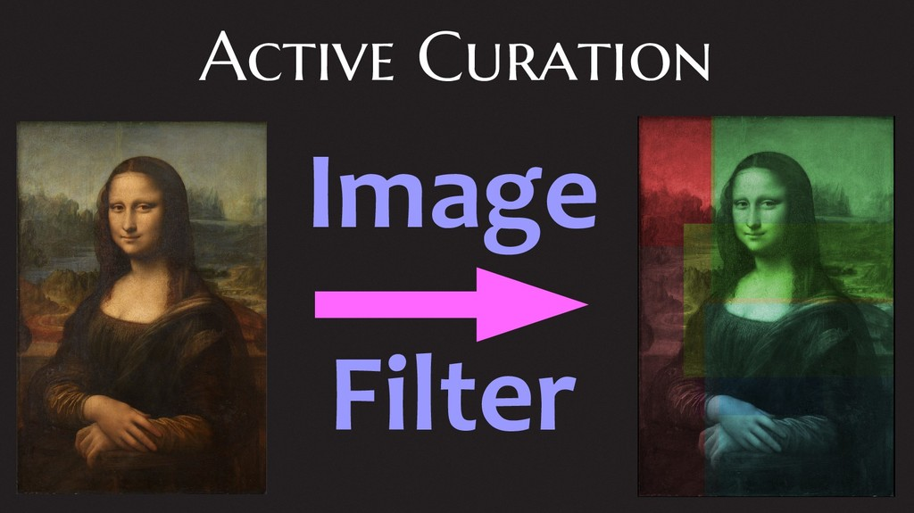Active Curation Image Filter