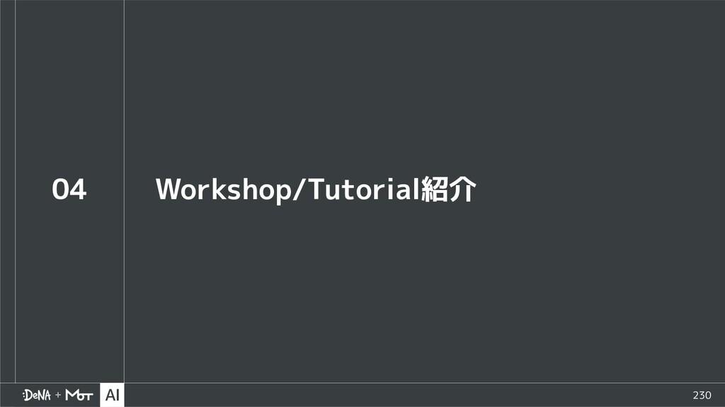 230 04 Workshop/Tutorial紹介