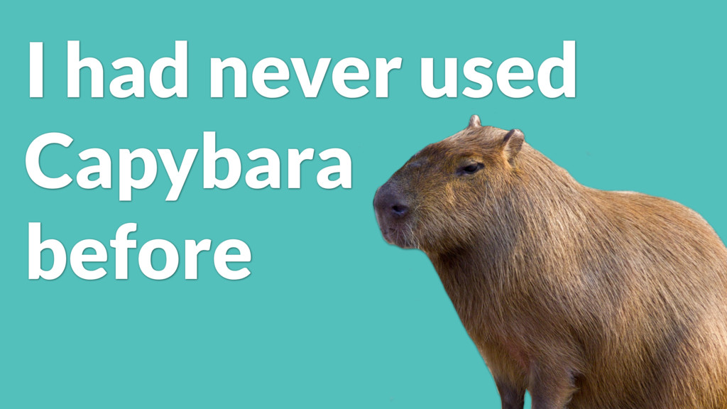 I had never used Capybara before