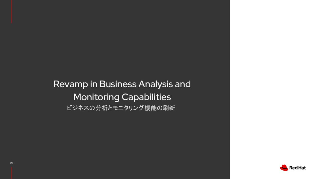 Revamp in Business Analysis and Monitoring Capa...