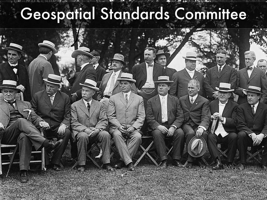 Geospatial Standards Committee