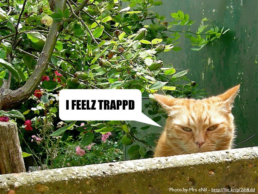 I FEELZ TRAPPD Photo by Mrs eNil - http://flic.k...