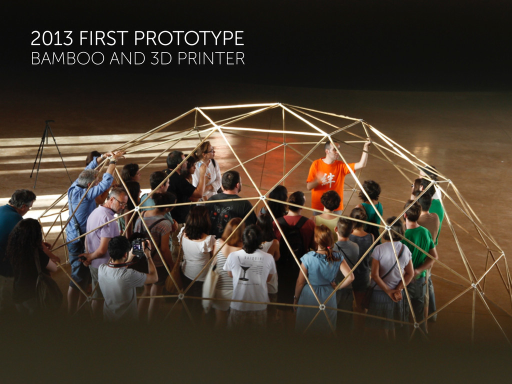 2013 FIRST PROTOTYPE BAMBOO AND 3D PRINTER