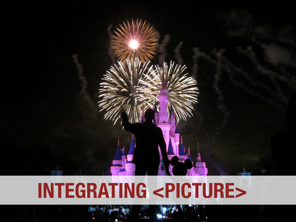 INTEGRATING <PICTURE>