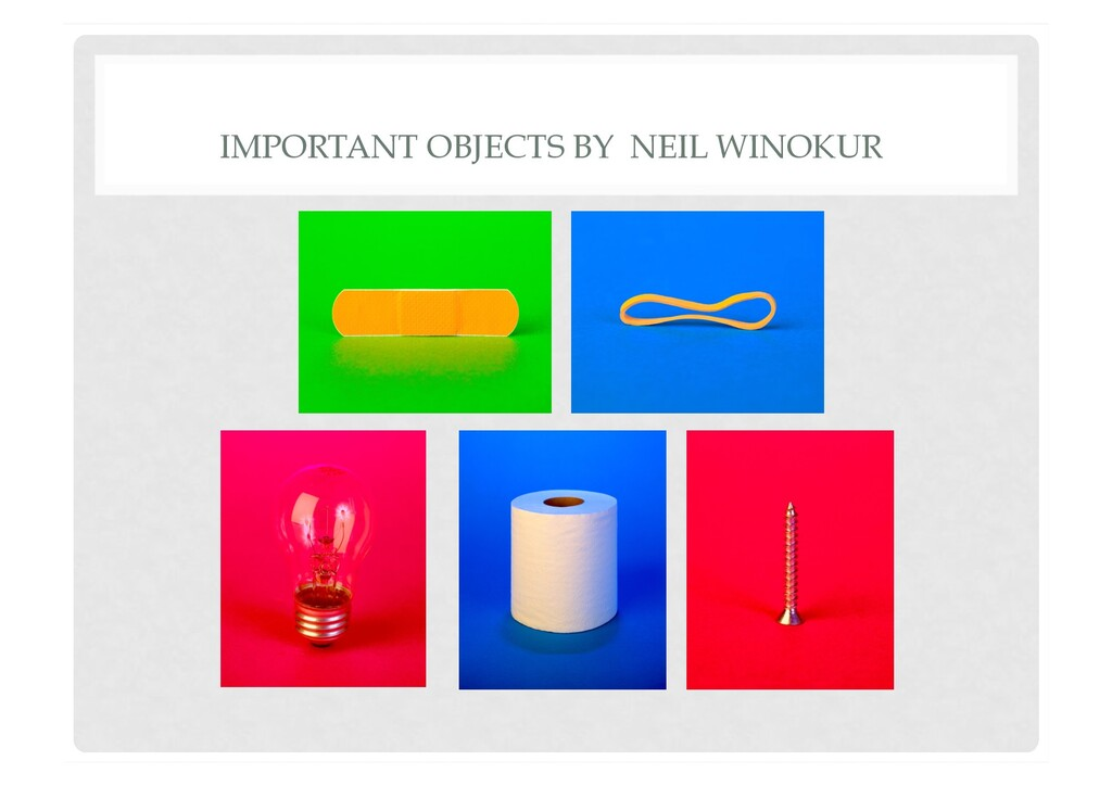 IMPORTANT OBJECTS BY NEIL WINOKUR