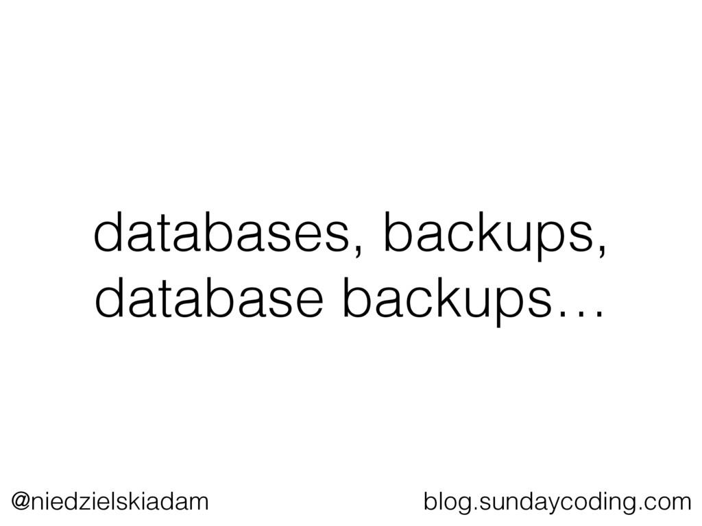 @niedzielskiadam blog.sundaycoding.com database...