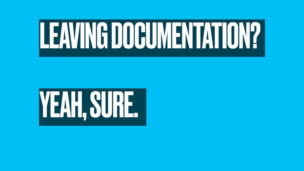 LEAVING DOCUMENTATION? YEAH, SURE.