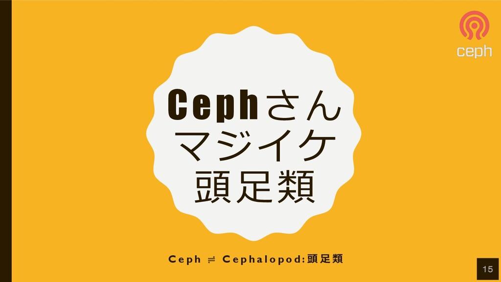Cephさん マジイケ 頭⾜類 C e p h ≓ C e p h a l o p o d :...