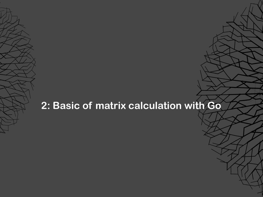 2: Basic of matrix calculation with Go